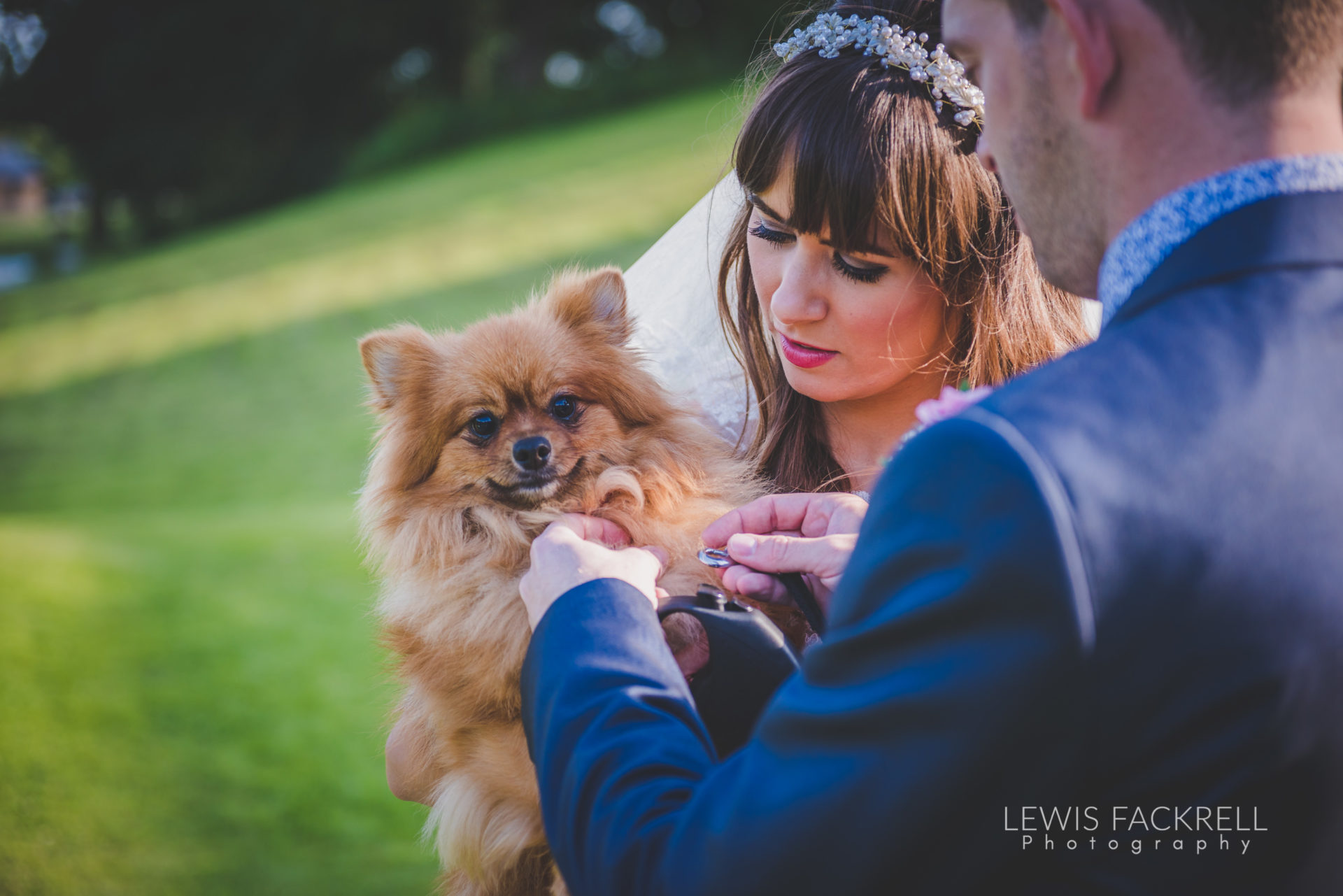 Lewis-Fackrell-Photography-Wedding-Photographer-Cardiff-Swansea-Bristol-Newport-Pre-wedding-photoshoot-cerian-dan-canada-lake-lodge-llantrisant--91
