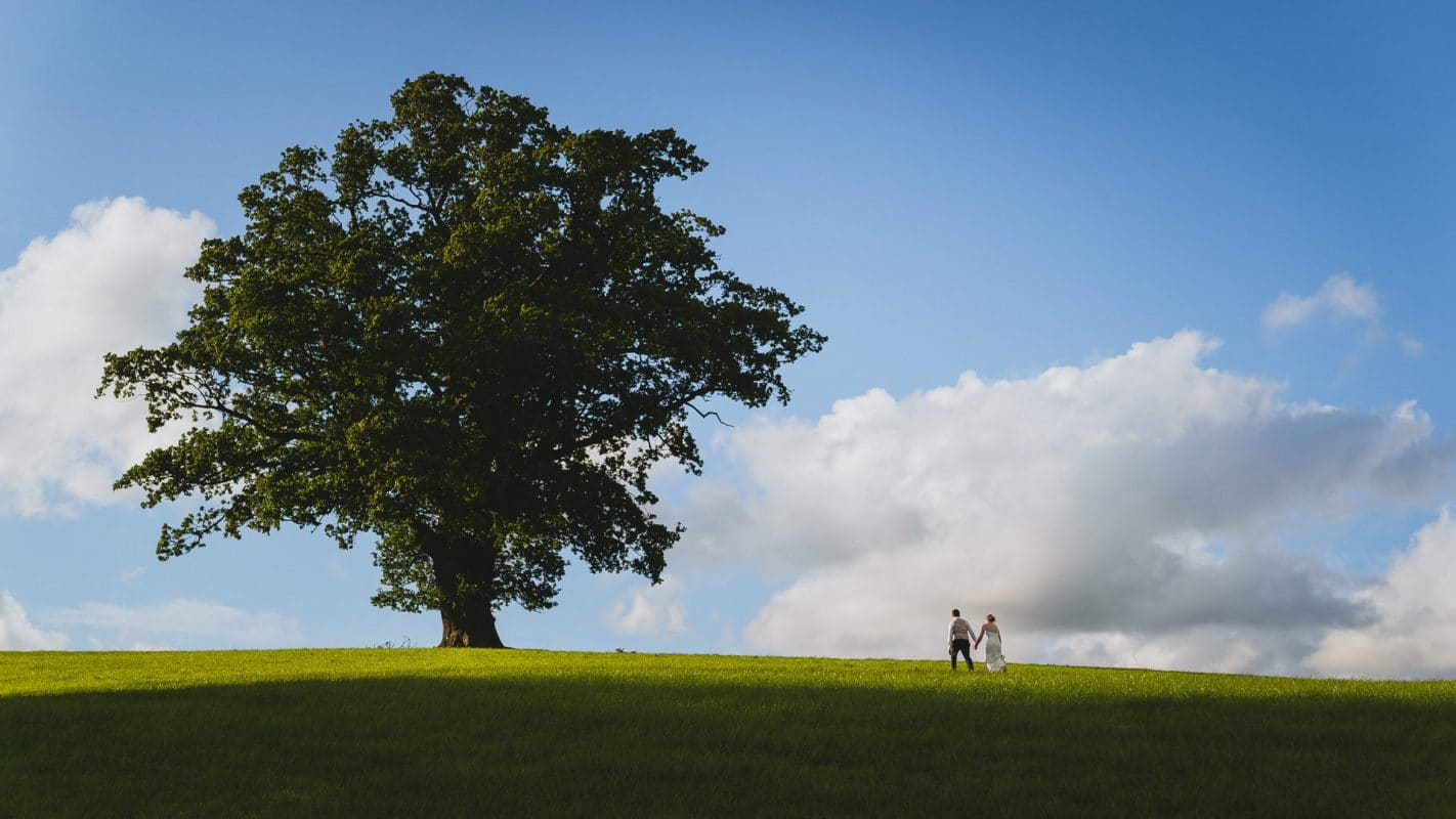 bride and groom walking to tree on their farm